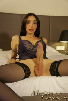 Trannies In Nylons Movies 119