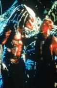 Хищник / Predator (Арнольд Шварценеггер / Arnold Schwarzenegger, 1987) 7f7ff7482420473