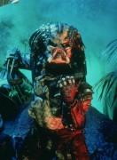 Хищник / Predator (Арнольд Шварценеггер / Arnold Schwarzenegger, 1987) C1bcb4482420599