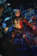 Хищник / Predator (Арнольд Шварценеггер / Arnold Schwarzenegger, 1987) F040ed482420572