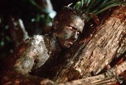 Хищник / Predator (Арнольд Шварценеггер / Arnold Schwarzenegger, 1987) Ba1aba482524075