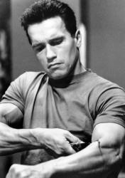 Терминатор 2 - Судный день / Terminator 2 Judgment Day (Арнольд Шварценеггер, Линда Хэмилтон, Эдвард Ферлонг, 1991) 527c8e484231544