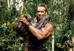 Хищник / Predator (Арнольд Шварценеггер / Arnold Schwarzenegger, 1987) 5b515c484424381