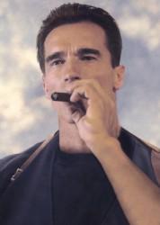Стиратель / Eraser (Арнольд Шварценеггер, Ванесса Уильямс, 1996) 14c3c9486071221