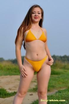 http://thumbnails115.imagebam.com/48823/13ede2488220518.jpg