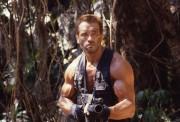 Хищник / Predator (Арнольд Шварценеггер / Arnold Schwarzenegger, 1987) Bda394488352132