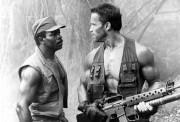 Хищник / Predator (Арнольд Шварценеггер / Arnold Schwarzenegger, 1987) D3073b497591121