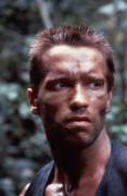 Хищник / Predator (Арнольд Шварценеггер / Arnold Schwarzenegger, 1987) Ceea3f497728408
