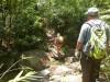 Hiking 2012 June 16 - 頁 2 04bf00498614239