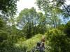 Hiking 2012 June 16 - 頁 2 C41890498613462