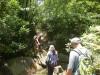 Hiking 2012 June 16 - 頁 2 E25c71498614896