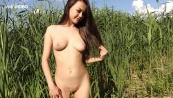http://thumbnails115.imagebam.com/50006/e7f0c5500056658.jpg