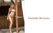 Charlotte McKinney : Very Hot Wallpapers x 6  87738f501857045