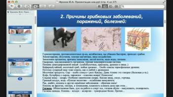 Методики излечения от грибковых заболеваний, кожных и внутренних поражений (2015) Видеокурс