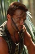 Хищник / Predator (Арнольд Шварценеггер / Arnold Schwarzenegger, 1987) D1c322506384207
