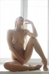 http://thumbnails115.imagebam.com/50723/0206bc507222257.jpg
