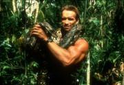 Хищник / Predator (Арнольд Шварценеггер / Arnold Schwarzenegger, 1987) 9138c3508345668