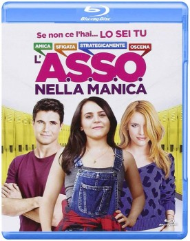 L'A.S.S.O. nella manica (2015) BD-Untouched 1080p AVC DTS HD-AC3 iTA-ENG