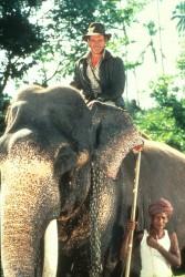Индиана Джонс и храм судьбы / Indiana Jones and the Temple of Doom (Харрисон Форд, Кейт Кэпшоу, 1984) 3b434c509893349