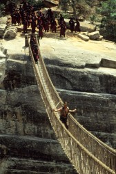 Индиана Джонс и храм судьбы / Indiana Jones and the Temple of Doom (Харрисон Форд, Кейт Кэпшоу, 1984) Ff3c97509894220