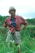 Парк Юрского периода / Jurassic Park (Сэм Нил, Джефф Голдблюм, Лора Дерн, 1993)  464a28510425518
