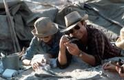 Парк Юрского периода / Jurassic Park (Сэм Нил, Джефф Голдблюм, Лора Дерн, 1993)  6e2e66510425590