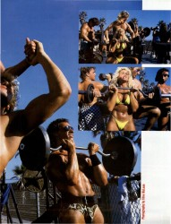 Love-Muscle Beach 2