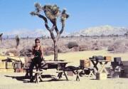 Терминатор 2 - Судный день / Terminator 2 Judgment Day (Арнольд Шварценеггер, Линда Хэмилтон, Эдвард Ферлонг, 1991) 6fa27e518695086