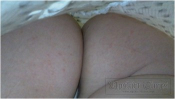 http://thumbnails115.imagebam.com/51876/be0e3f518753928.jpg
