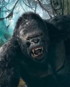 Кинг Конг / King Kong (Наоми Уоттс, Эдриен Броуди, Джэк Блэк, 2005) 6ab70e519030749