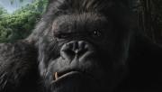 Кинг Конг / King Kong (Наоми Уоттс, Эдриен Броуди, Джэк Блэк, 2005) A95fb1519030547