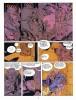 El Corazon de Coronado Jodorowsky-Moebius 0c4faf519411282
